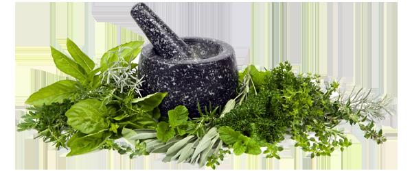 Herbs-block