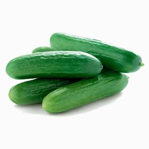 Cucumber-block1
