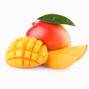 Dried-Mango-block1