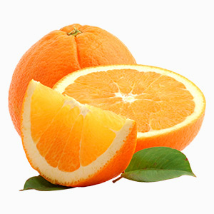 Dried-Orange-block1