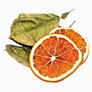 Dried-Orange-block2
